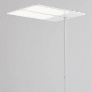stona-lampa-kancelarijska-tobias-grau-XT-S-TWO-SIDE